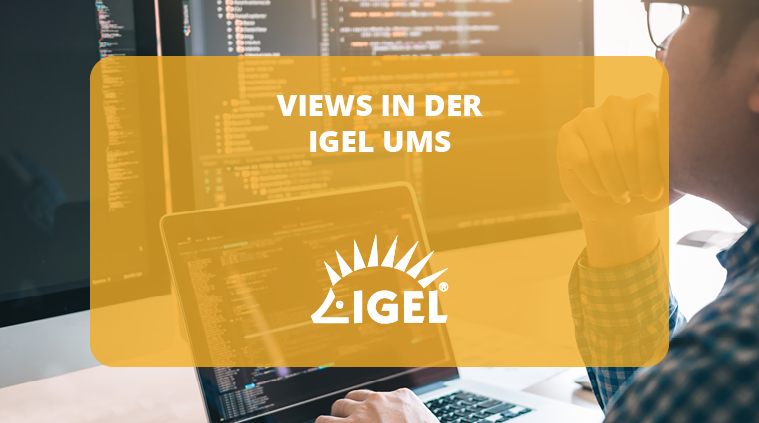 Views in der IGEL UMS
